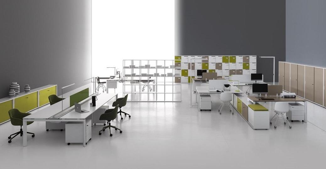 Entity ufficio operativo - riganelli